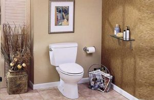 Best-Comfort-Height-Toilets