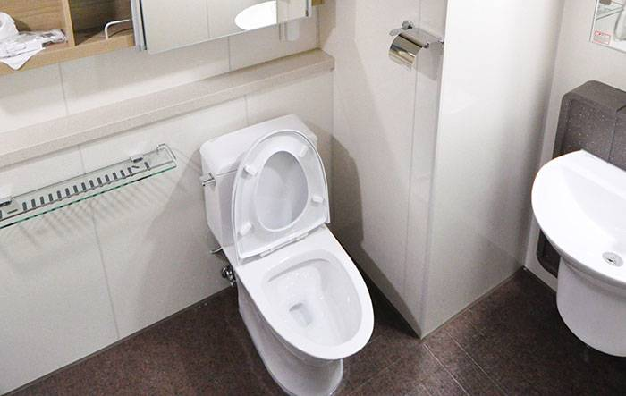 Best-Flushing-Toilet