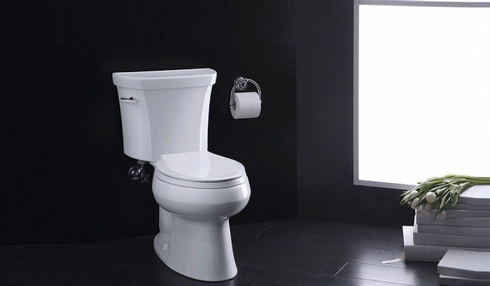 KOHLER-Wellworth-Toilet-Review